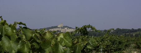 _Commune_06349_Chateauneufb.jpg